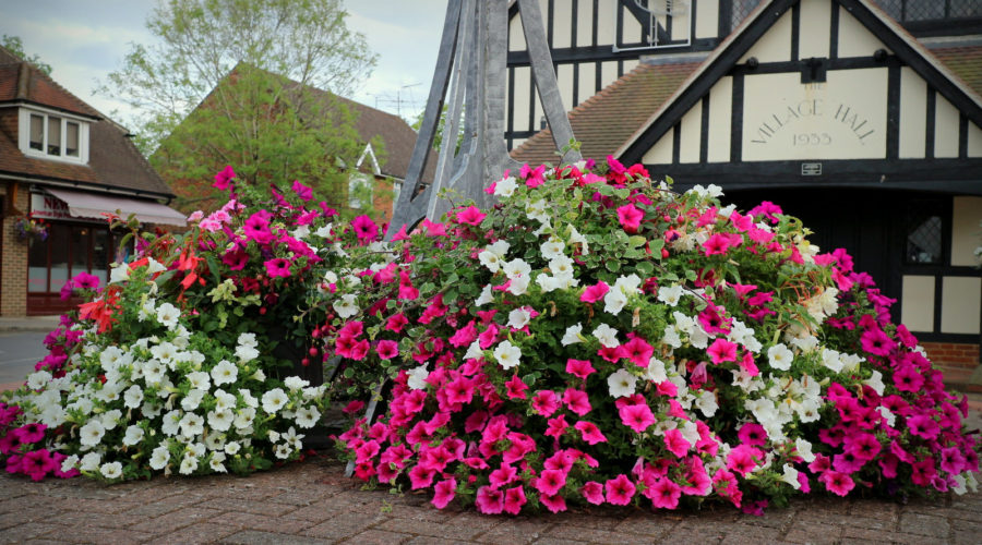Cranleigh in Bloom newsletter April 2018