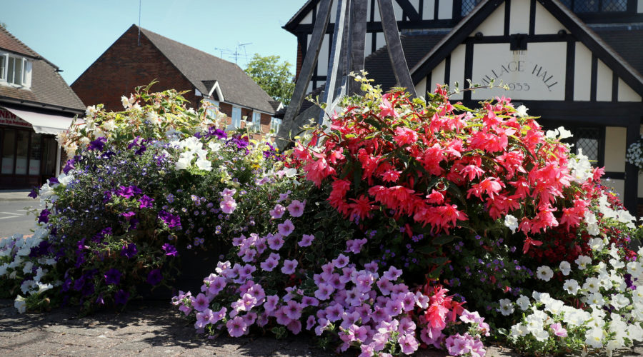 Cranleigh reaches finals of RHS Britain in Bloom 2019